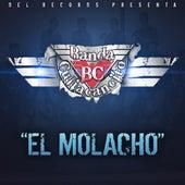 Play & Download El Molacho by Banda Culiacancito | Napster