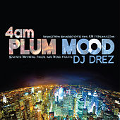 Play & Download 4am: Plum Mood by DJ Drez | Napster