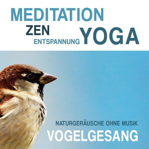 Play & Download Meditation, Zen, Yoga und Entspannung mit Naturgeräuschen ohne Musik: Vogelgesang by Meditation Zen Yoga Entspannung | Napster