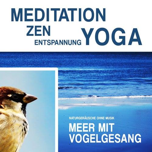 Play & Download Meditation, Zen, Yoga und Entspannung mit Naturgeräuschen ohne Musik: Meer mit Vogelgesang by Meditation Zen Yoga Entspannung | Napster