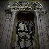 Play & Download Echoes of Trapped Voices by Larva | Napster