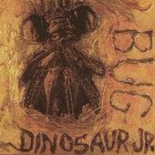 Bug de Dinosaur Jr.