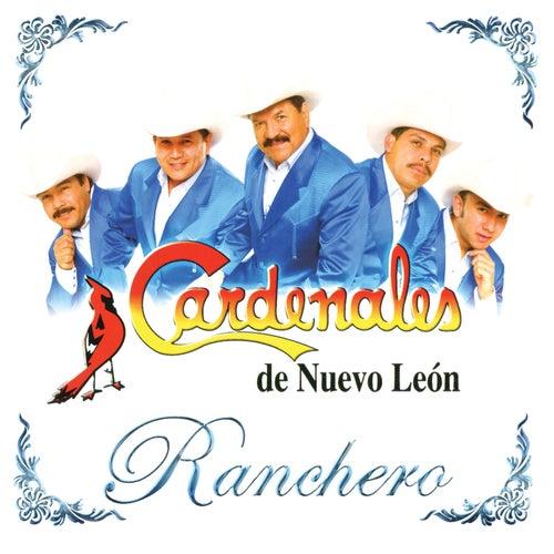 Play & Download Ranchero by Cardenales De Nuevo León | Napster