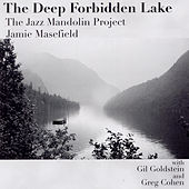 The Deep Forbidden Lake by The Jazz Mandolin Project