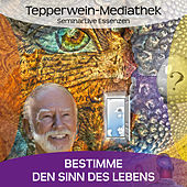 Play & Download Bestimme den Sinn deines Lebens by Kurt Tepperwein | Napster