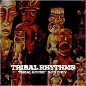 Tribal Rhythms by Various Artists