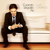 Play & Download Cuando Llegaste Asi by Luis Campos | Napster