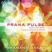 Prana Pulse by Shaman's Dream
