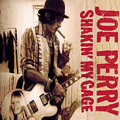 Play & Download Shakin' My Cage by Joe Perry | Napster