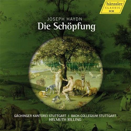 Play & Download Haydn: Die Schopfung by Christine Schafer | Napster