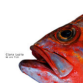 We Are Fish by Clara Luzia