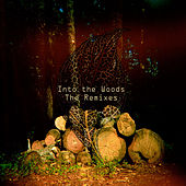 Into The Woods - The Remixes by Various Artists