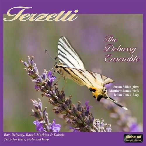 Play & Download Terzetti by The Debussy Ensemble | Napster