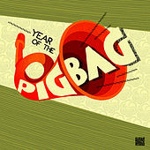 Year Of The Pigbag by Pigbag