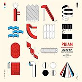 Play & Download 2030 - Single by Priam | Napster