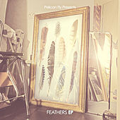 Play & Download Feathers by Various Artists | Napster