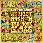 Play & Download Apricot Hash in the Hour Glass - Electric Sound Show, Vol. 3 (Remastered) by Various Artists | Napster