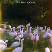 August in My Mind by The Fresh & Onlys