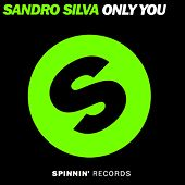 Only You by Sandro Silva