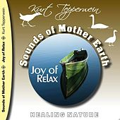 Play & Download Sounds of Mother Earth - Joy of Relax by Kurt Tepperwein | Napster