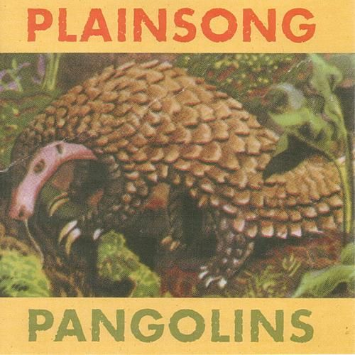 Play & Download Pangolins by Plainsong | Napster