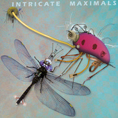 Play & Download Intricate Maximals by Various Artists | Napster