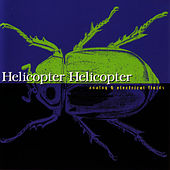 Analog & Electrical Fields by Helicopter Helicopter