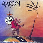 Road Island by Ambrosia