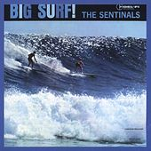 Play & Download Big Surf by The Sentinals | Napster