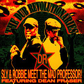 The Dub Revolutionaries von Sly and Robbie