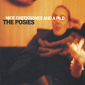 NICE CHEEKBONES AND Ph.D. by The Posies