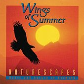 Play & Download Wings Of Summer by Karel Roessingh | Napster