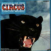 Play & Download Sounds of the Circus-Circus Marches Volume 27 by Sounds Of The Circus South Shore Concert Band | Napster
