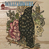 Play & Download Rebel, Sweetheart by The Wallflowers | Napster
