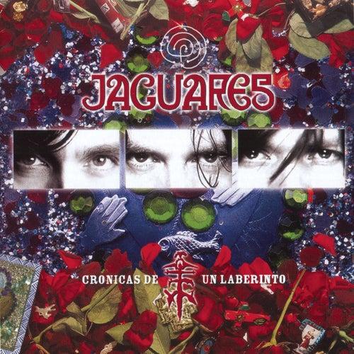 Play & Download Cronicas De Un Laberinto by Jaguares | Napster
