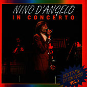 NINO DANGELO IN CONCERTO VOL.1 by Nino D'Angelo