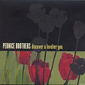 Play & Download Discover A Lovelier You by Pernice Brothers | Napster