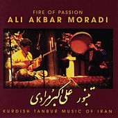 Fire Of Passion by Ali Akbar Moradi