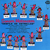 Play & Download Desfile De Estrellas by Various Artists | Napster