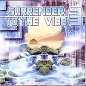 Surrender To The Vibe 3 by Various Artists