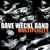 Play & Download Multiplicity by Dave Weckl | Napster