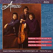 Play & Download Amici by Amici Chamber Ensemble | Napster