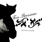 Play & Download What I Mean To Say Is Goodbye by Tom Brosseau | Napster