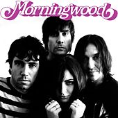 Play & Download Jetsetter by Morningwood | Napster