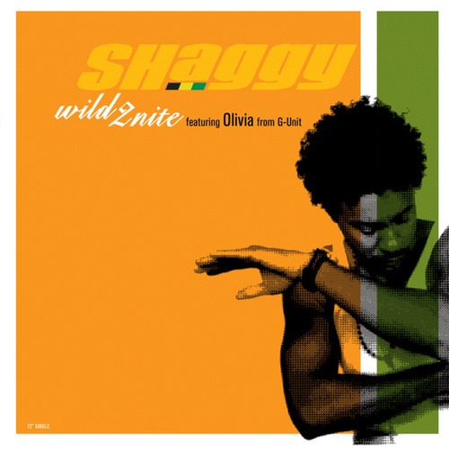 Wild 2nite by Shaggy