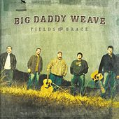Play & Download Fields Of Grace by Big Daddy Weave | Napster