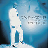 Play & Download Feels Good by David Morales | Napster