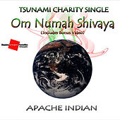 Om Numah Shivaya by Apache Indian