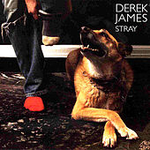 Play & Download Stray by Derek James | Napster