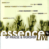 Play & Download Essence of Praise & Worship LIVE by Various Artists | Napster